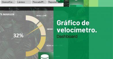 Grafico de velocimetro